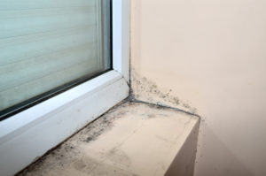 Mold damage alongside a windowsill and on wall