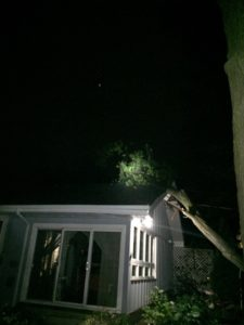 tree impact on roof of house