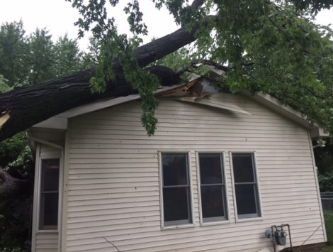 swartz contracting - tree fell on house before